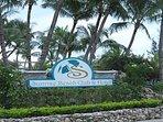 Sunrise Beach Club & Hotel