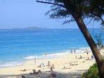 The stunning beach just steps away