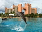 Atlantis Resort & Casino is only a 5 minute walk to.