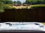 Relax in the 6 person hot tub