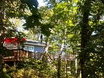 surrounded by woods you'll feel like you're staying in a tree house