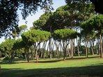 184 acri di verde che circondano una antica villa romana