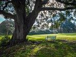 Moreton House Devon - View of the Southern lawns