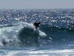 Hang ten!  World class surfing 30 seconds from your front door!