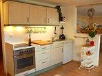 Moderne Küchenzeile mit Kühlschrank, Herd, Dunstabzug, Mülltrennung und Spüle.