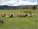 Enjoy horse riding, driving a sulky, mountain trail riding all within majestic surrounds.