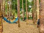 Enjoy an afternoon nap or a good book in the zen hammock garden