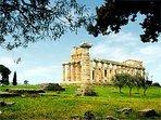 Templi di Paestum Km. 25