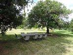 Salon de jardin dans le parc Leia