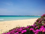 Lido Canne (Torre Lapillo): spiaggia libera e attrezzata a 200 mt da Villa Paola