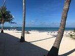 Plenty of Sun or Shade on the Beach