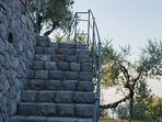 The staircase in carved stone, access from the parking area to the front courtyard of the villa.