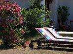 Bains de soleil et terrasse