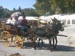 A Vallabrègues Festival de la Vannerie (2ème Week-end d'août)