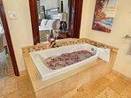 H204 Master Bath Tub and View