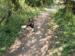 Walking from Gurnard to Thorness Bay