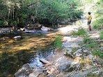 La Rivière à 500mts