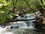 Our Stream comes from Shenandoah Natl Park
