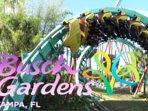 **Busch Gardens 20 mins (14 miles) !!!**