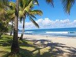 A proximité : La plage de Grande Anse à 8 minutes : la plus belle plage de l'île de La Réunion !