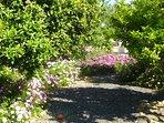 Beautiful gardens at Finca Arboleda