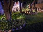 Jardin de noche