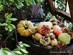 Frutti autunnali della Sardegna