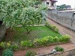 Le jardin et la cour  : vue du toit