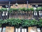 La glicinia de la fachada