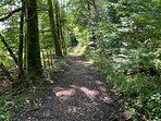 shared private path to the lake