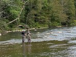 Fly-fishing in the New River