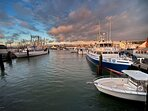 Nearby Marina with Boat Rentals, Fishing Charters, Riverboat Cruise, Parasail & Water Taxi