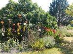 Le jardin au domaine de Geneviève des vignes, maison de vacances en Périgord