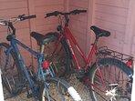 Vélos dans le cabanon