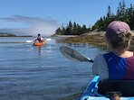 The LaHave Islands are superb for kayaking. Rentals can be delivered to our house (ask us).