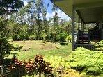 View of backyard & deck