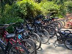Bike Rack/Rentals Available